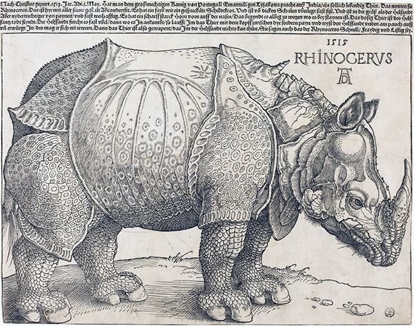 Albrecht Dürer, The Rhinoceros, 1511. Woodcut. 9 1/4 × 11 3/4 inches. Courtesy National Gallery of Art, Washington.